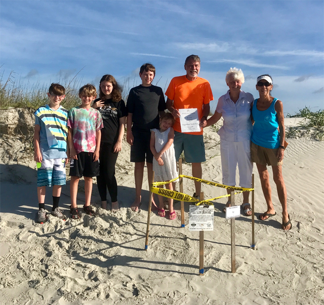 Adopt a Sea Turtle Nest Today!